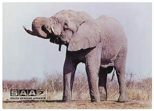 [AFRICA] South African Airways / [Elephant]. South