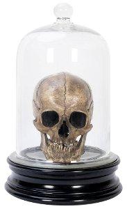 Animated Human Skull. Vienna: S. Klingl, 1920s. Genuine