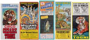 Lot of 13 European Circus Posters featuring Tigers and