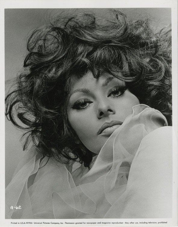 140: Sophia Loren portraits from Arabesque by Richard A - 2