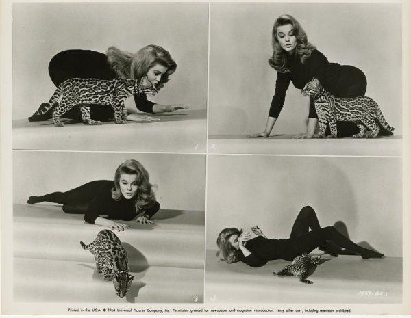 152: Ann-Margret photos from Viva Las Vegas - 10