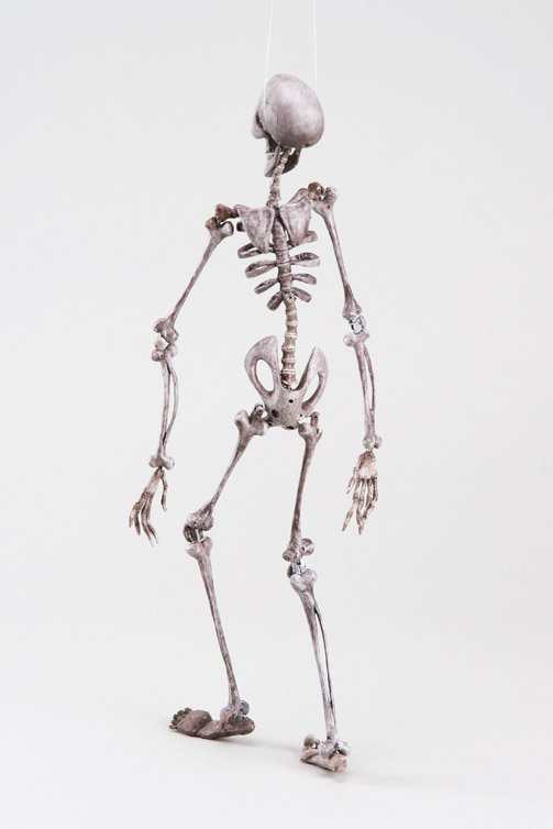 1120: Skeleton animation puppet from Corpse Bride - 6