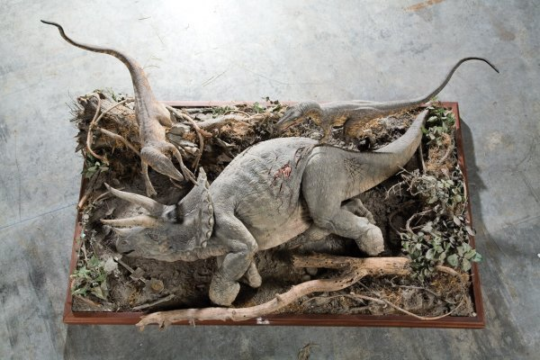 1143: 2 raptors feeding on Triceratops Jurassic Park