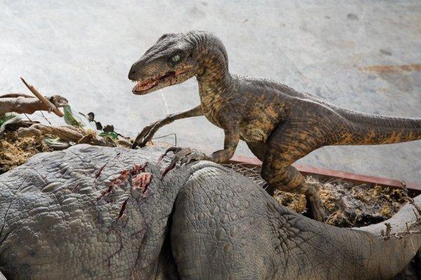 1143: 2 raptors feeding on Triceratops Jurassic Park - 2