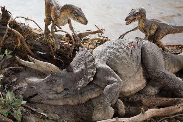 1143: 2 raptors feeding on Triceratops Jurassic Park - 3