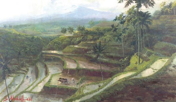 216: Persawahan di Jawa Barat