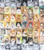 19: Championship Cat Show II