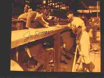 1156: 8'x10' Joe DiMaggio Autographed Photo w/COA