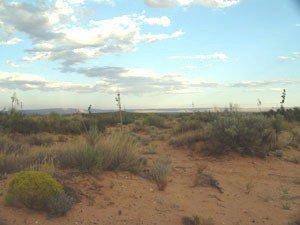 3: New Mexico 14 lot property military & Texas border