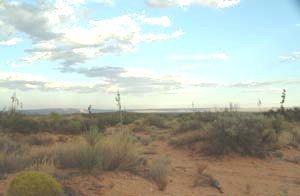 18: 1.2 acre NM property land near TX & military base