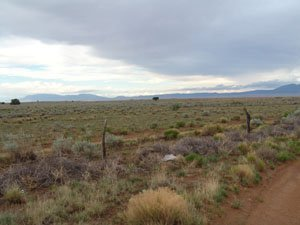 45: Foreclosure land 10 acre property in New Mexico