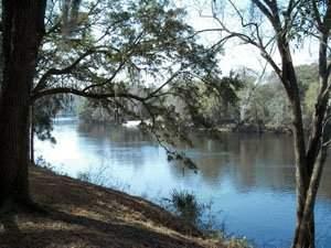 51: Florida 1acr property practically riverfront land