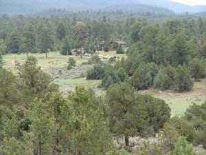 54: Rio Rancho Estate .5ac property in NM No Reserve