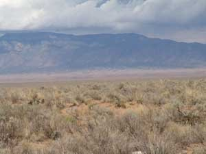55: 10 acre NM property in New Mexico north of Texas
