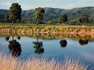 63: .5 ac NM property Colorado Texas land No Reserve