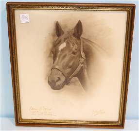 Man O' War Photograph