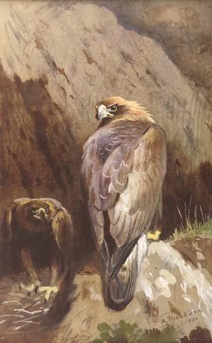 20: ARCHIBALD THORBURN (1860-1935)