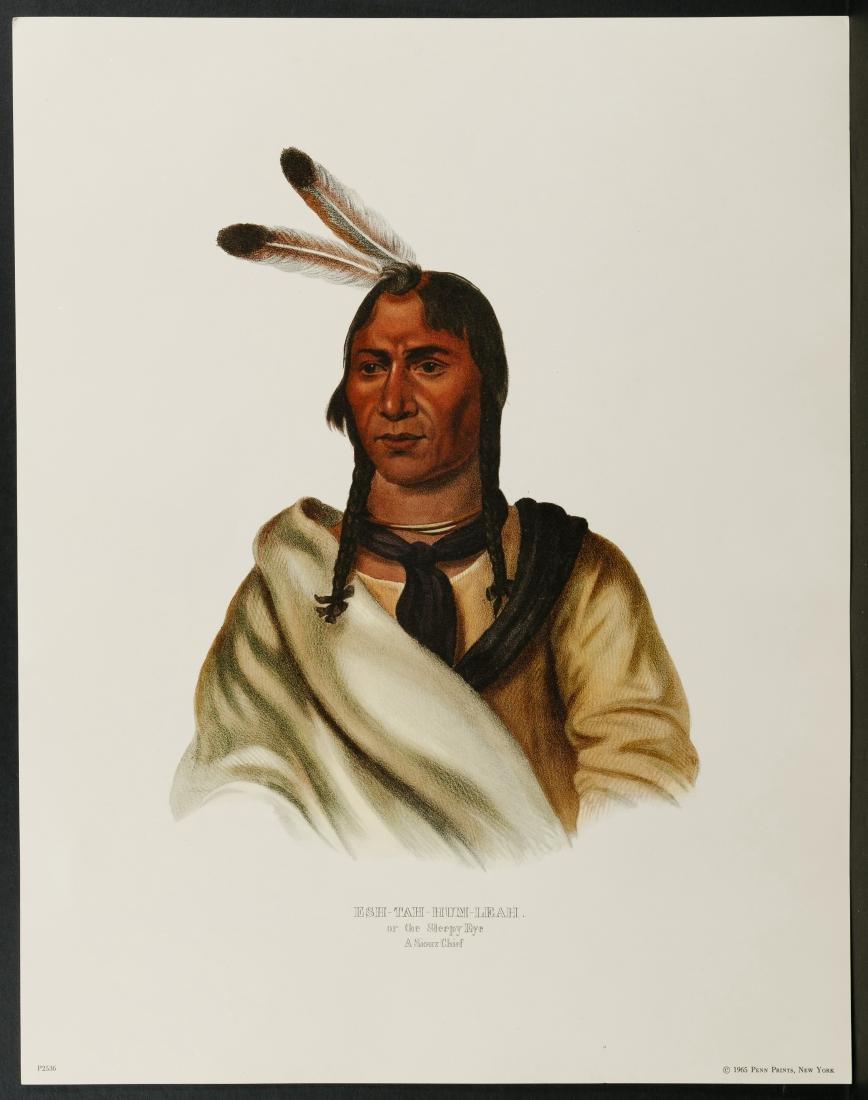 Native American Printed Portrait Assortment - 3