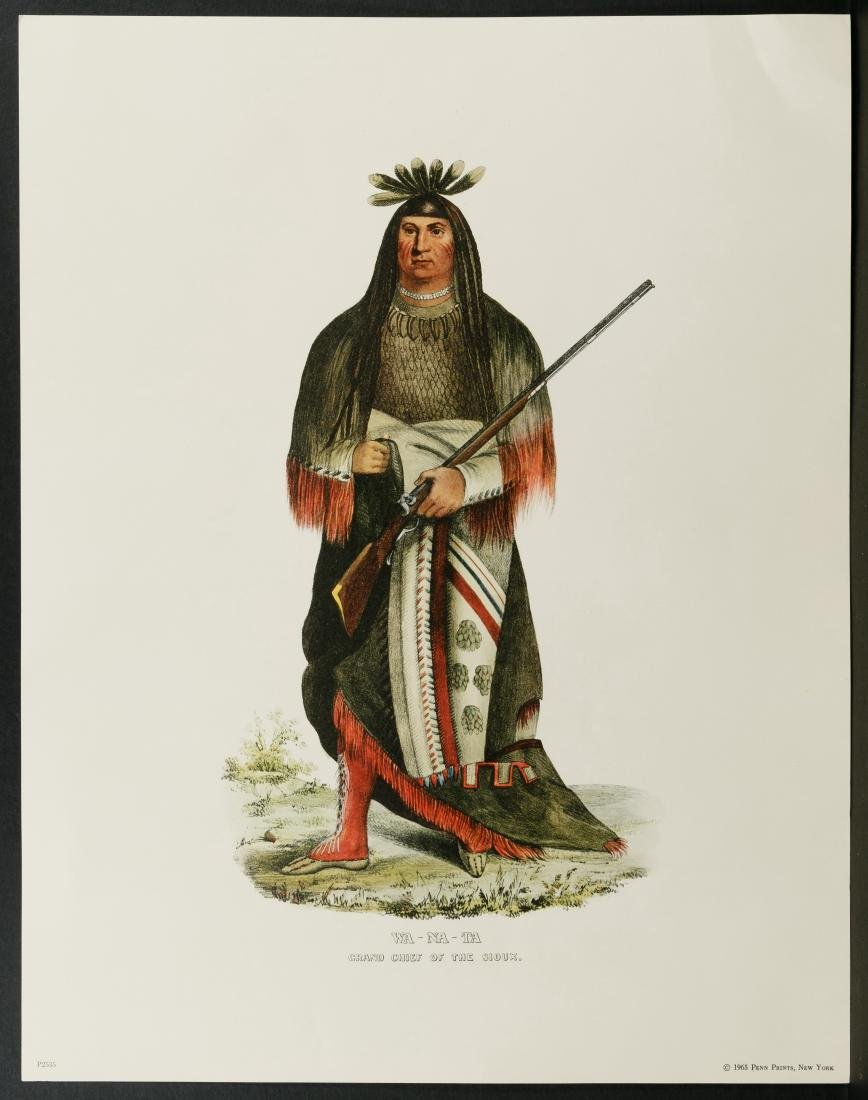 Native American Printed Portrait Assortment - 4