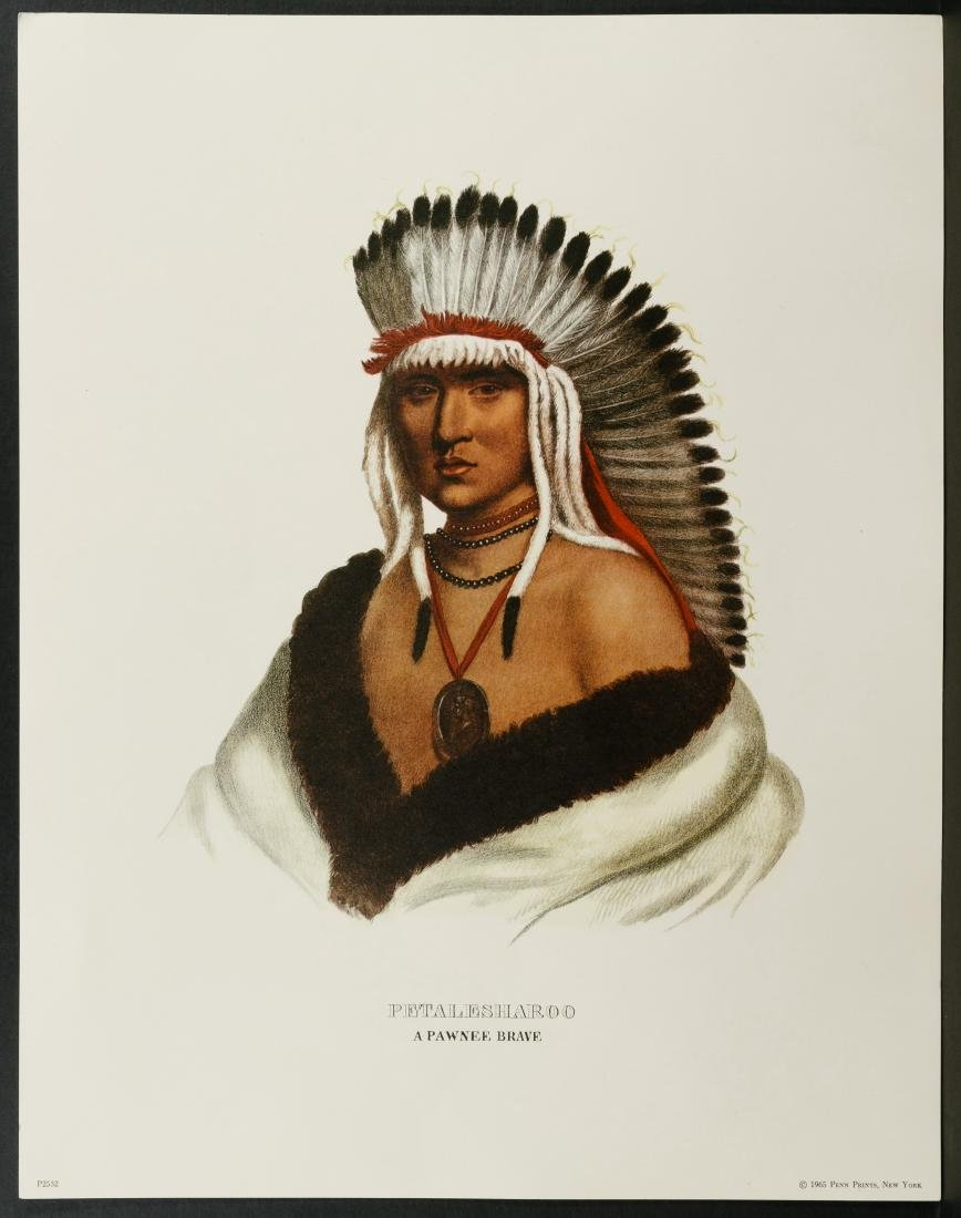 Native American Printed Portrait Assortment - 6