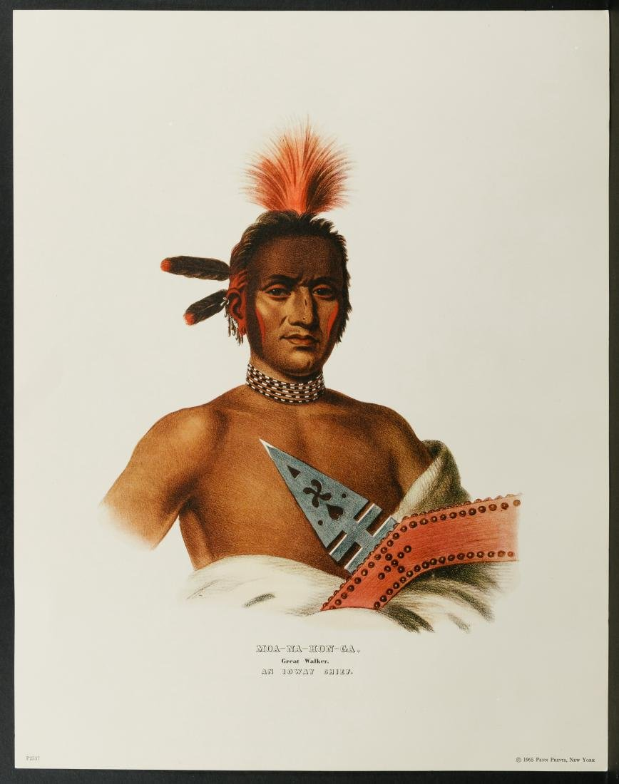 Native American Printed Portrait Assortment - 9