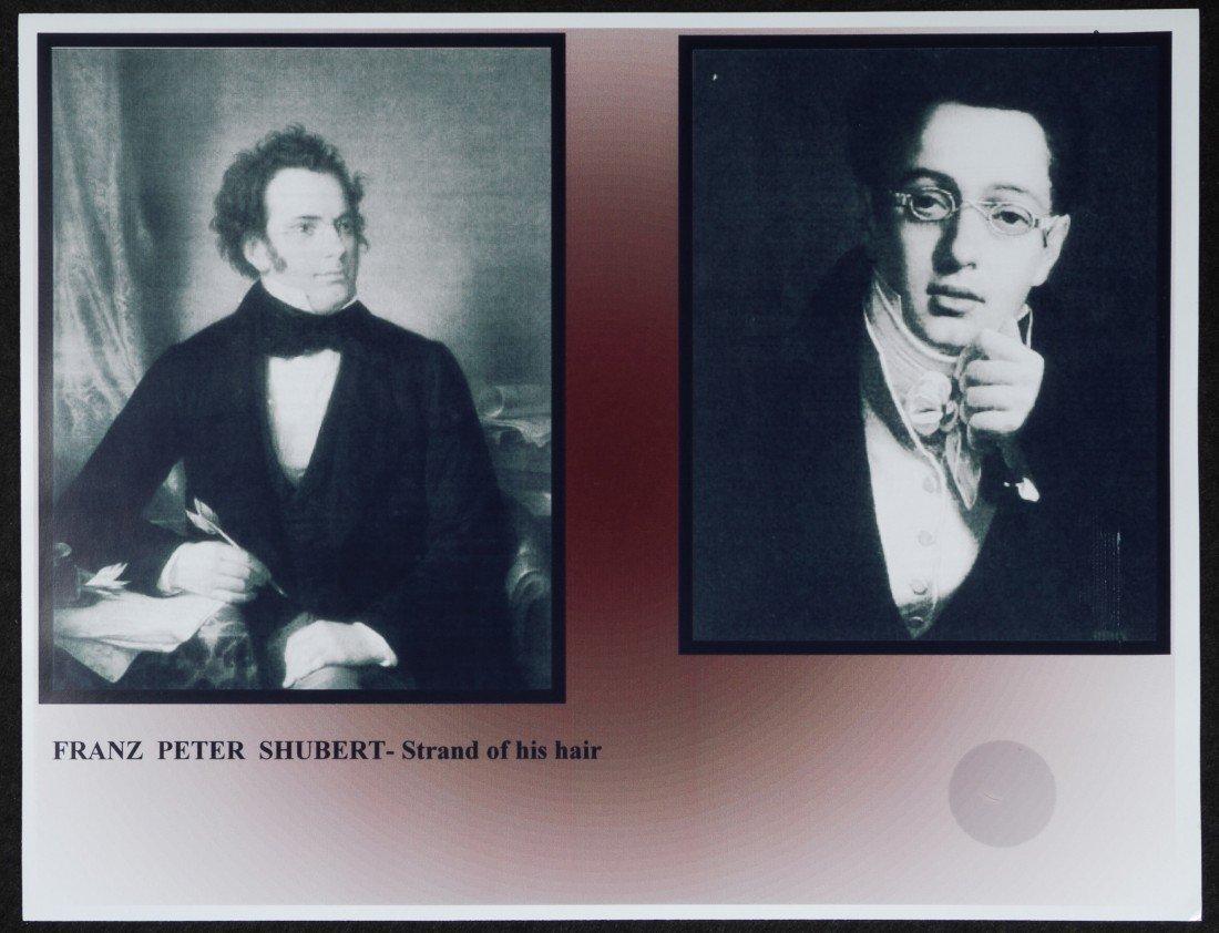 1: Franz Peter Shubert, Composer, Strand of Hair