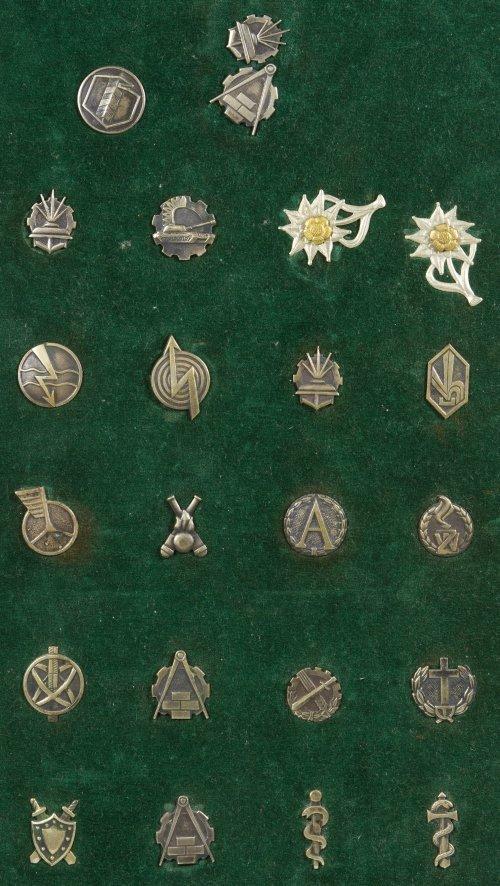 Polish Army Insignia Pins