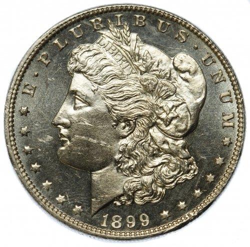 1899 $1 DMPL Unc