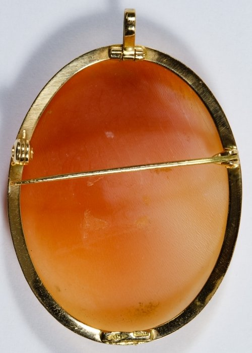 18k Gold Framed Carved Shell Cameo Pin / Pendant - 2
