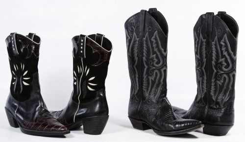 Sterling and Van Eli Women's Cowboy Boots