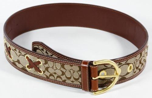 Designer Belt Assortment - 2