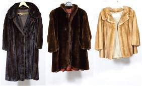 Fur Coat Assortment