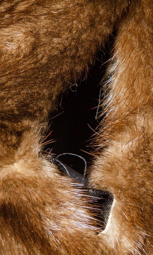 Mink Fur Coat by Christian Dior - 5