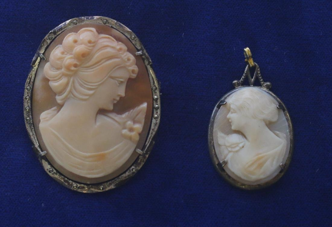 (2) CARVED SHELL CAMEO'S