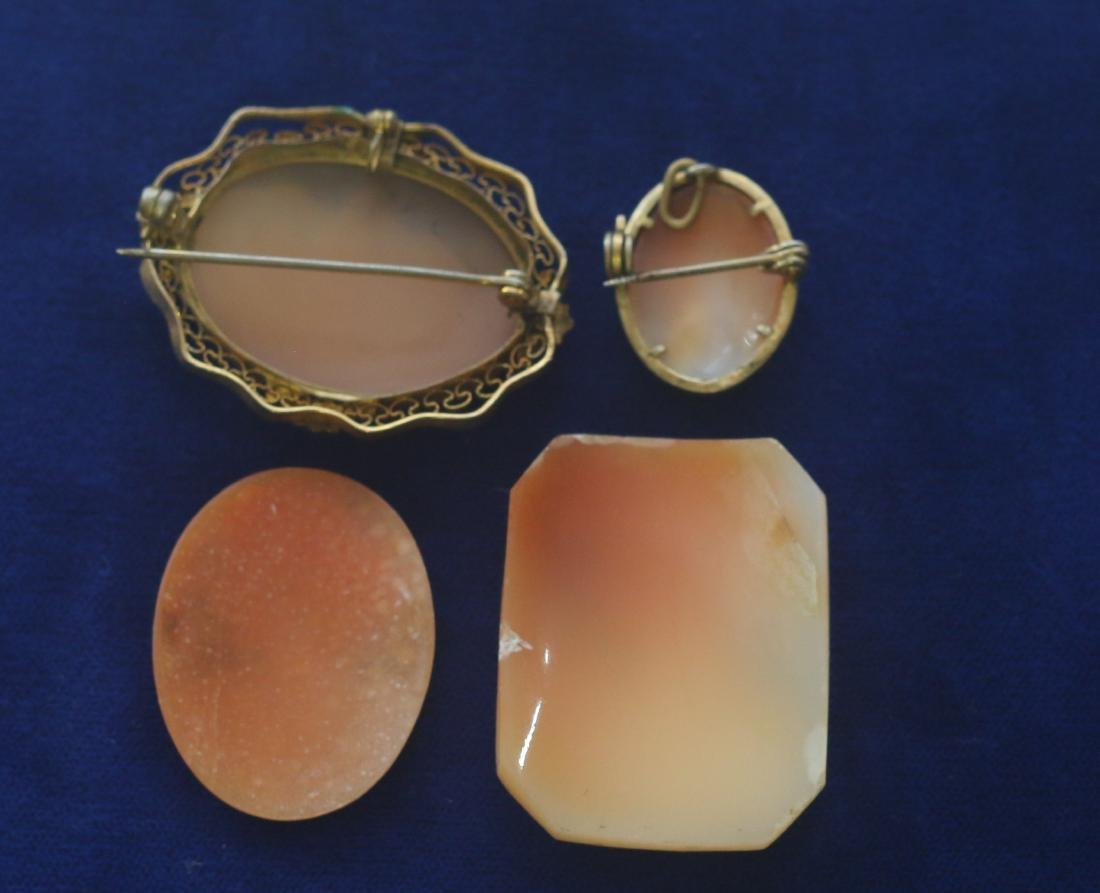(4) CARVED SHELL CAMEO'S - 2