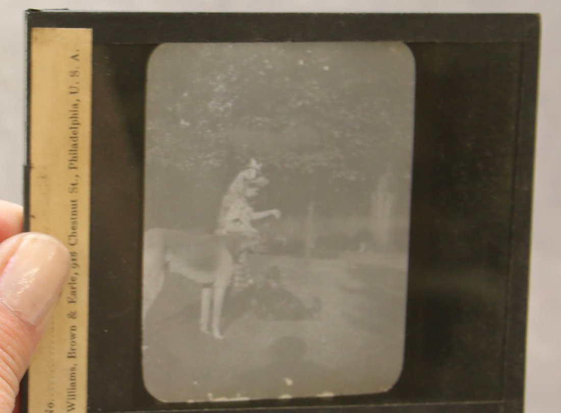 (2) BOXES OF GLASS SLIDES - 4