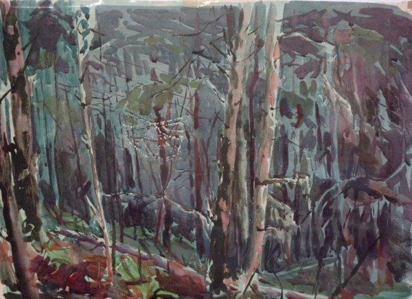 1009: MARTIN (AMERICAN) Forest Interior Watercolor