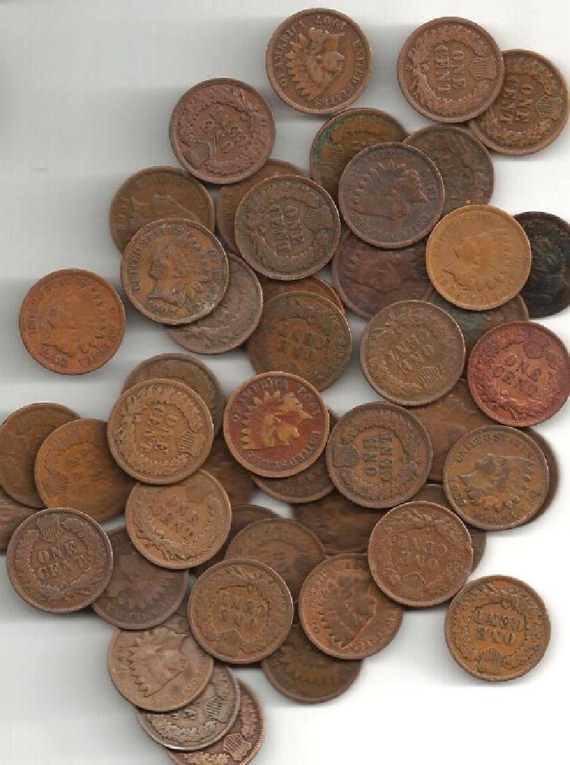 Lot of (50) Indian Head Cents