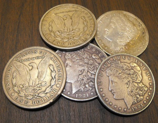 19: Lot of 5 Random Date Morgan Silver Dollars