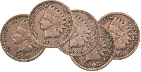 6: Indian Head Pennies (5 Different Dates)
