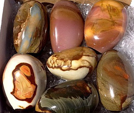 1: Lot of Polychrome Jasper Specimens