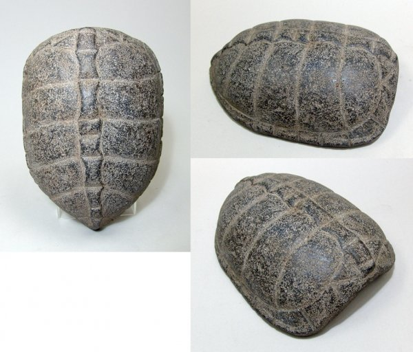 20: A REAR STONE TURTLE SHELL CARVING