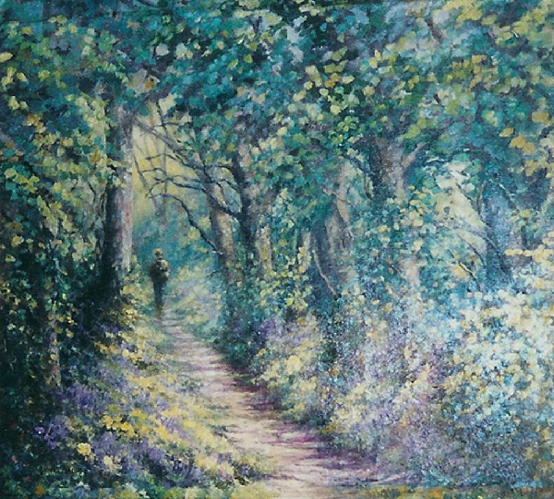 Forest Paths