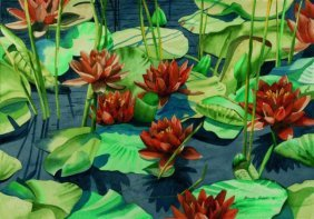 Rebek Thomas M(American Born 1942)  ��Lily Pond��