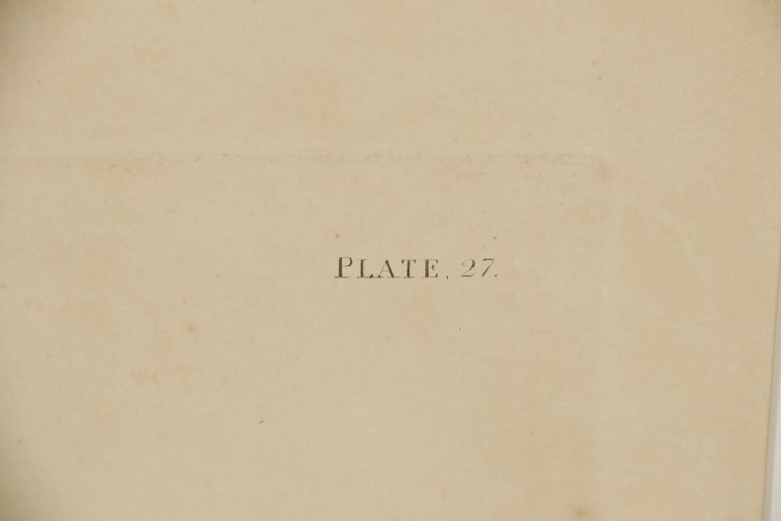 JOHN JAMES AUDUBON (NY, 1785-1851) - 4