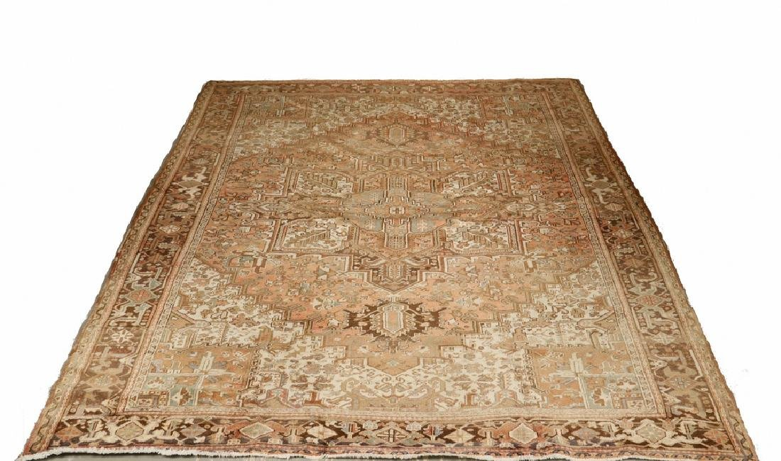 HERIZ CARPET - 9' x 11'-4""