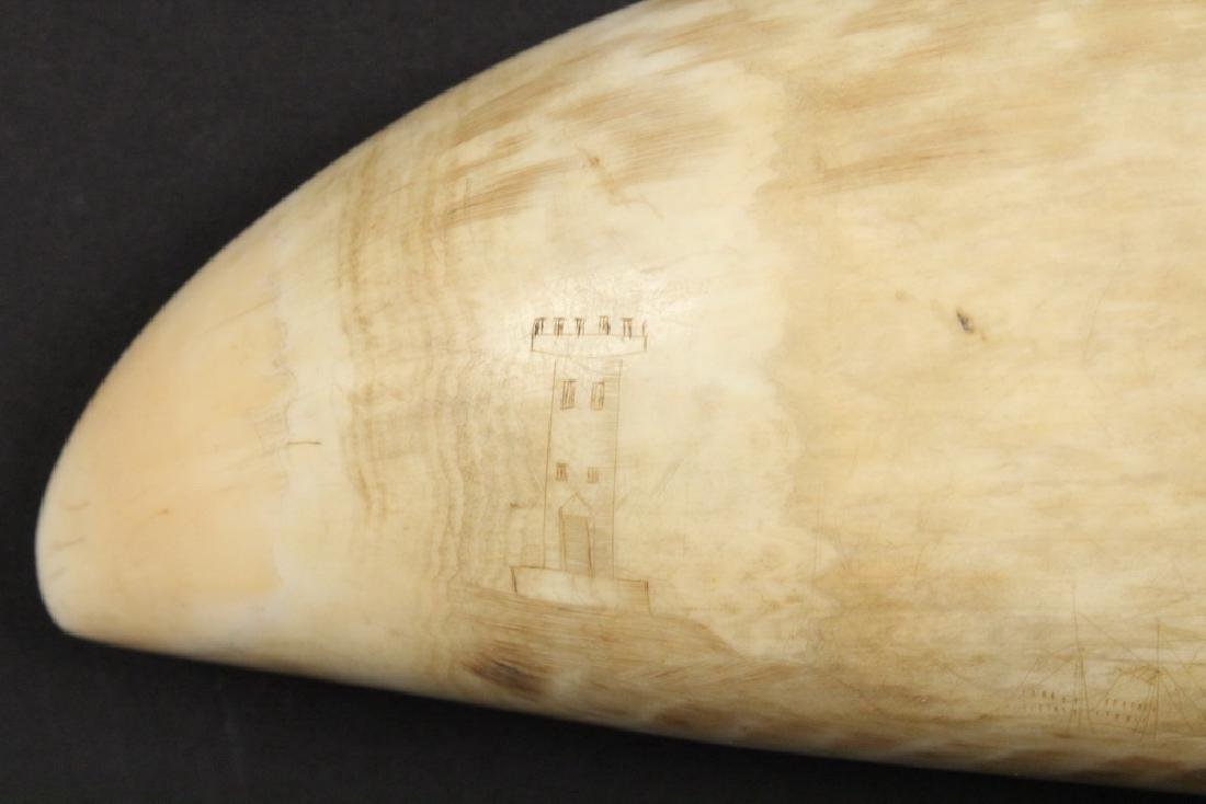 19TH C. SCRIMSHAWN WHALE'S TOOTH - 6