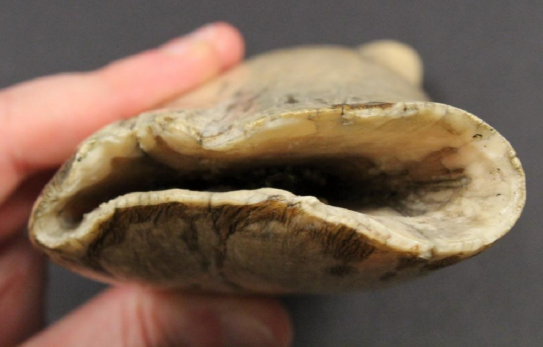 SCRIMSHAWN WHALE'S TOOTH - 6