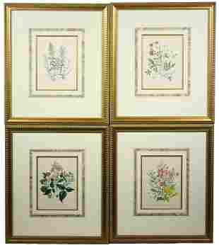 (SET OF 4) LARGE FRAMED 19TH C. BOTANICAL PRINTS BY
