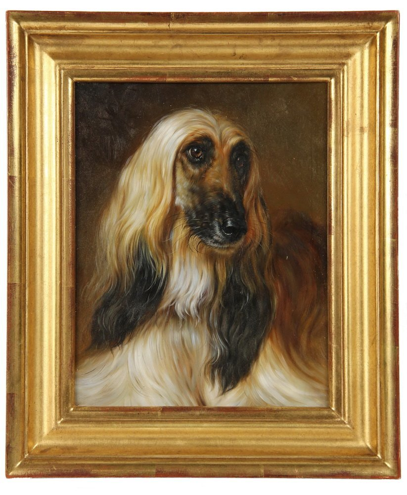 OIL ON PANEL - Bust Portrait of an Afghan Hound,